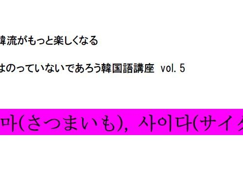 【辞書にはのっていないであろう韓国語講座 vol.5】 さつまいも&サイダー