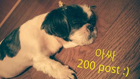 投稿200回記念 「韓流ブログ.com」について